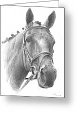 Horse Knotted Mane Pencil Portrait Greeting Card