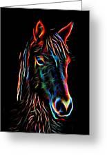 Horse On Black Greeting Card