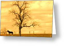 Horse On The Hill Greeting Card