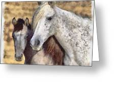Horse One Greeting Card