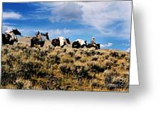 Horse Pack   #003 Greeting Card