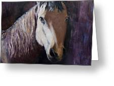 Horse Painting Greeting Card