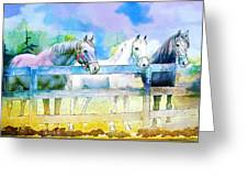 Horse Paintings 008 Greeting Card