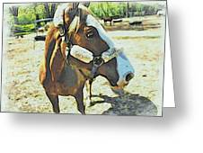 Horse Point Of View Greeting Card