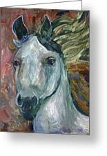 Horse Portrait 103 Greeting Card