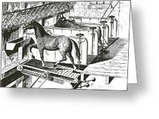 Horse Powered Stall Cleaner, 1880 Greeting Card