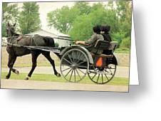 Horse Powered Transportation Greeting Card