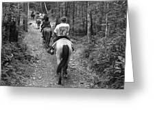 Horse Trail Greeting Card