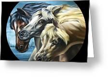 Horse Trio Greeting Card