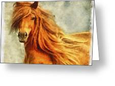 Horse Two Greeting Card