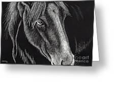 Horse Up Close Greeting Card