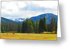 Horse View Greeting Card