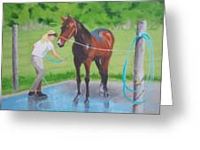 Horse   Wash Greeting Card