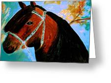 Horse With Long Forelocks Greeting Card