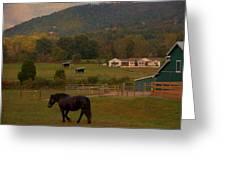 Horseback Riding In Gatlinburg Greeting Card by Dan Sproul
