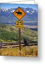 Horseback Riding Sign Greeting Card
