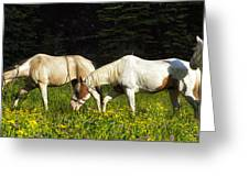 Horses Among Wildflowers Greeting Card