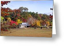 Horses And Barn In The Fall 2 Greeting Card