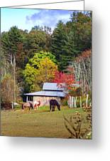 Horses And Barn In The Fall Greeting Card