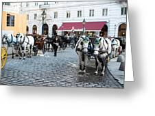 Horses And Carriage In Vienna Greeting Card