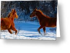 Horses At Play Greeting Card