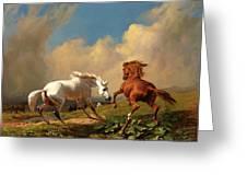 Horses Balking At Approaching Storm Greeting Card