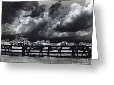 Horses Black And White Infrared Stormy Sky Nature Landscape Greeting Card