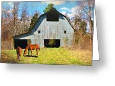 Horses Call This Old Barn Home Greeting Card