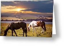 Horses Grazing At Sunset Greeting Card