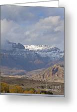 Horses In North Fork Canyon   #4876 Greeting Card
