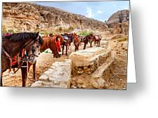 Horses Of Petra Greeting Card