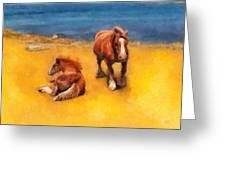 Horses On The Coast Of Brittany Greeting Card