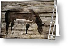 Horses On Wood Greeting Card