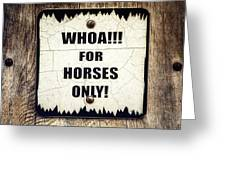 Horses Only Sign Picture Greeting Card
