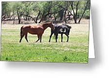 Horses Out Wickenburg Way Greeting Card