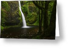 Horsetail Falls Columbia River Gorge Greeting Card