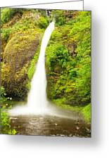 Horsetail Falls In The Spring Greeting Card