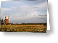 Horsey Windmill In Autumn Greeting Card