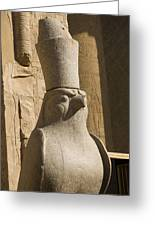 horus the Eagle Headed God Greeting Card by Brenda Kean