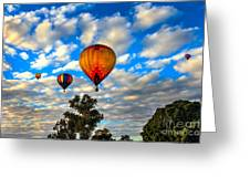 Hot Air Balloons Over Trees Greeting Card