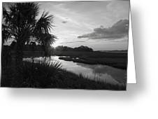 Hot June Sunrise I        Bw Greeting Card by Sheri McLeroy