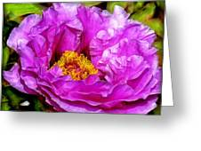 Hot-pink Flower Greeting Card