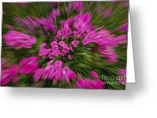 Hot Pink Flower Zoom Greeting Card
