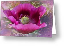 Hot Pink Poppy Greeting Card