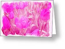 Hot Stuff   In Your Face Pink Tulips Greeting Card