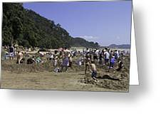 Hot Water Beach Greeting Card