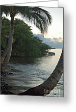 Hotel Molokai Beach Greeting Card
