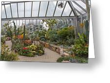 Hothouse Greeting Card