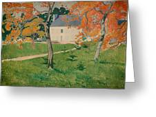 House Among Trees Greeting Card