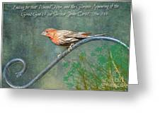 House Finch With Verse Greeting Card